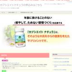 HTMLサイト